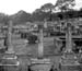 New Zealand Picture images Dargaville graveyard 3